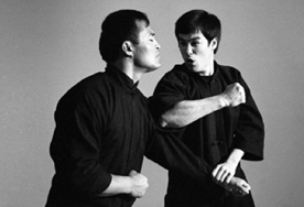 What fighting style did bruce lee use?
