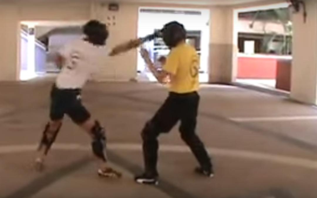 Jeet Kune Do Techniques